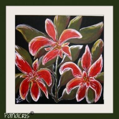 Picturi cu flori Craciunita