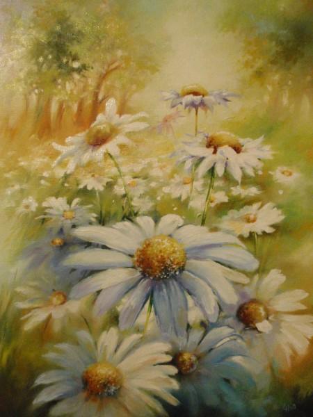 Picturi cu flori Cimp de margarete