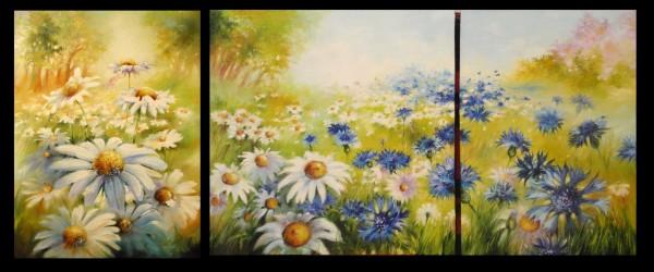 Picturi cu flori Cimp de margarete - final
