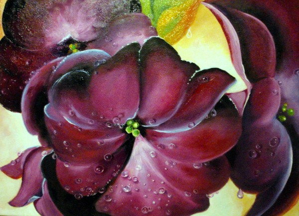 Picturi cu flori Roua