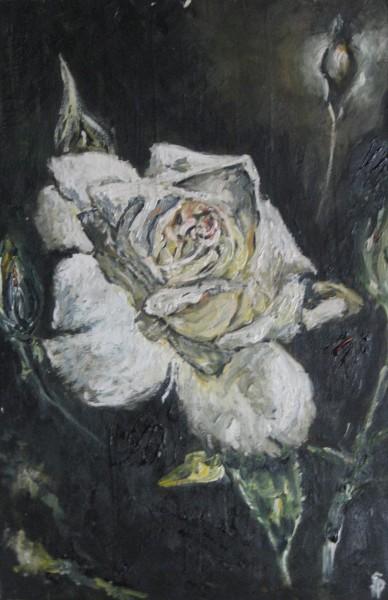 Picturi cu flori Trandafir alb