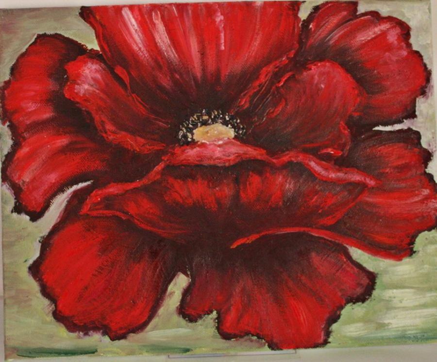 Picturi cu flori Mac Rosu