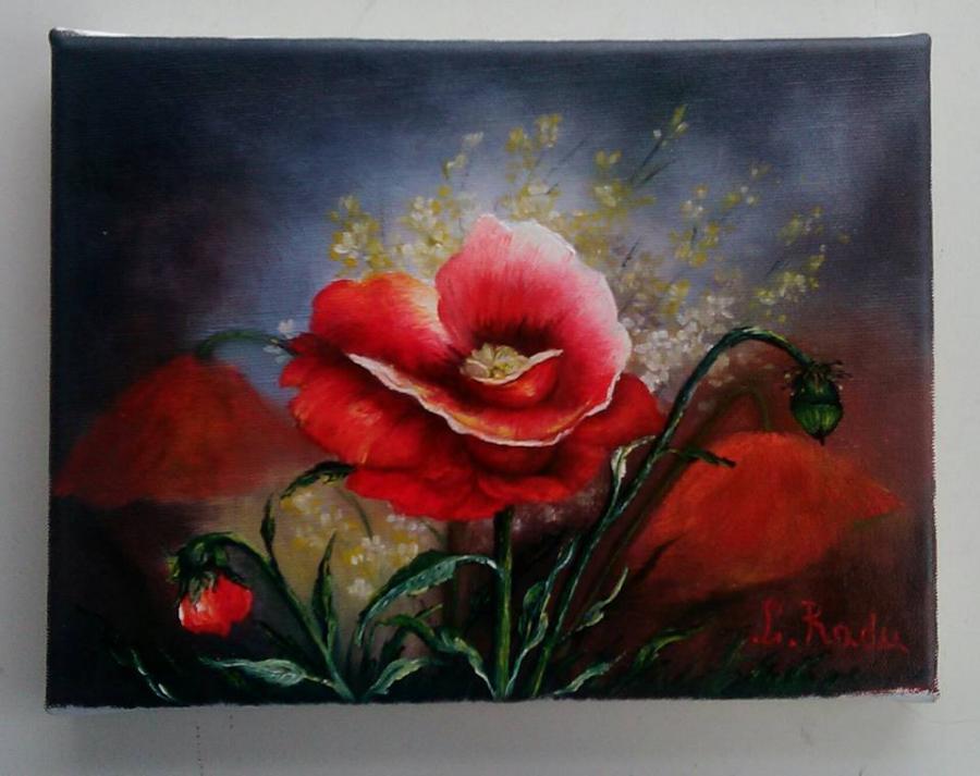 Picturi cu flori Macii salbatici
