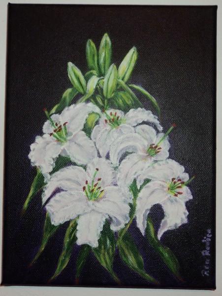Picturi cu flori Crini albi