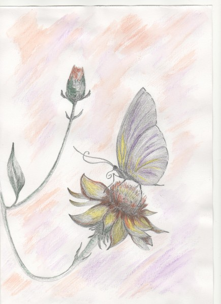 Picturi cu flori Repaos