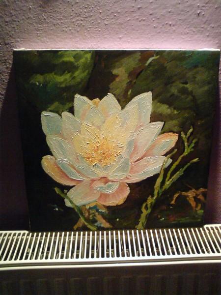 Picturi cu flori Nufar