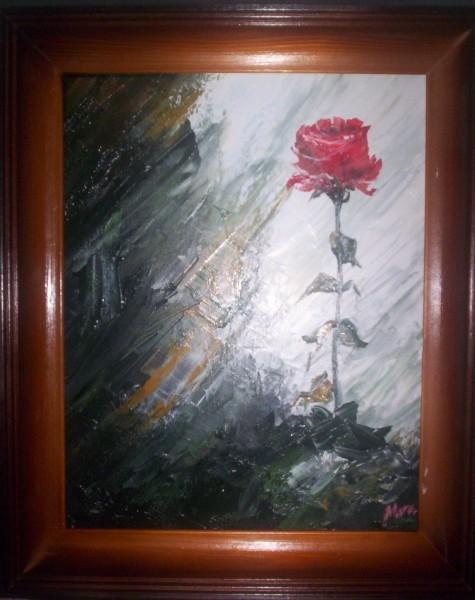 Picturi cu flori Trandafirul singuratic