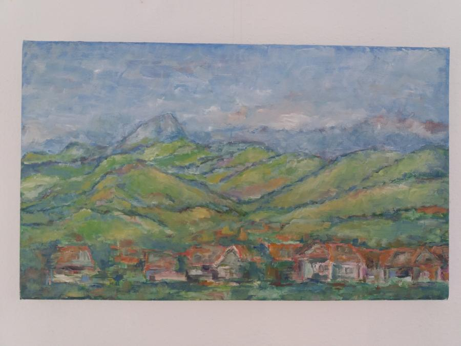 Picturi cu peisaje In departaree