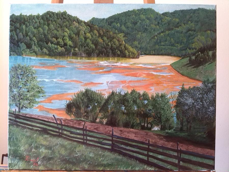 Picturi cu peisaje Geamana