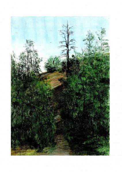 Picturi cu peisaje Dambu - morii