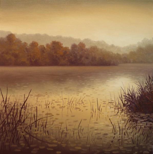 Picturi cu peisaje Delta.