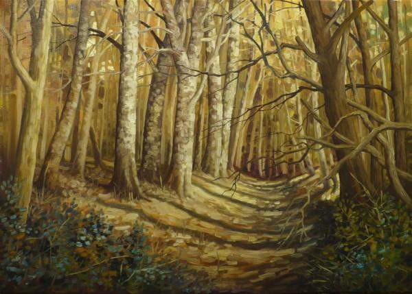 Picturi cu peisaje Padure insorita