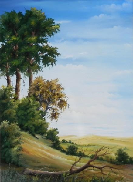 Picturi cu peisaje Iesirea din padure 2