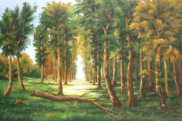 Picturi cu peisaje In adancul padurii