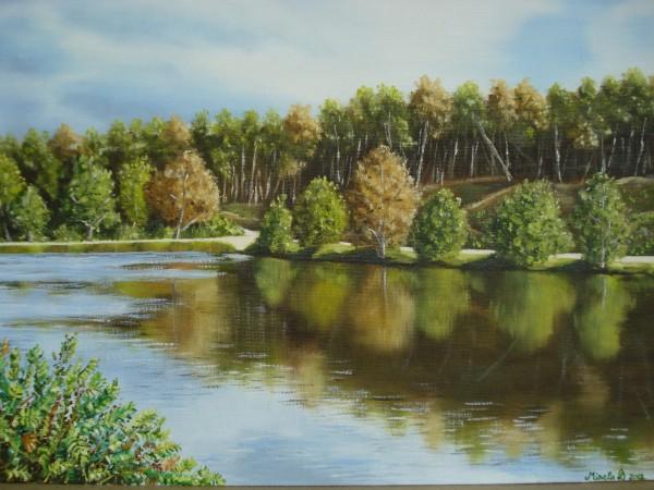 Picturi cu peisaje Cannock chase