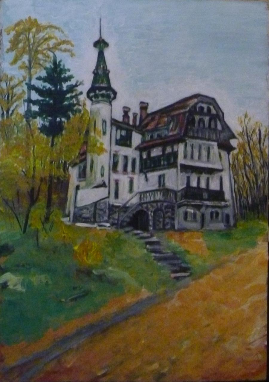 Picturi cu peisaje Vila Cantacuzino