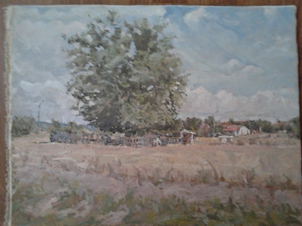 Picturi cu peisaje Stina