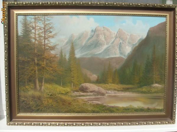 Picturi cu peisaje Peisaj alpin2