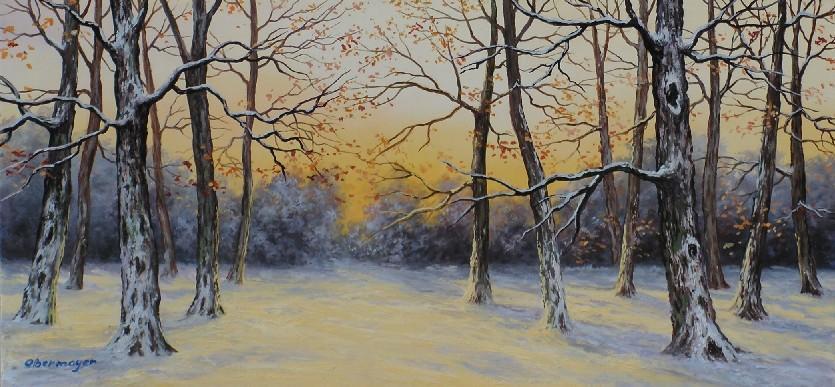 Picturi de iarna PIESAJ DE IARNA