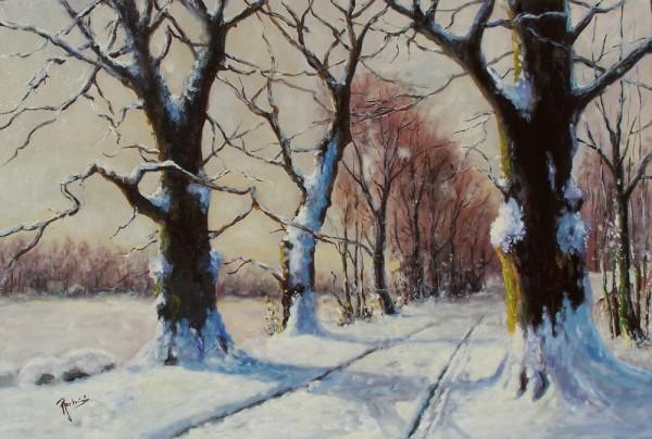 Picturi de iarna La marginea padurii