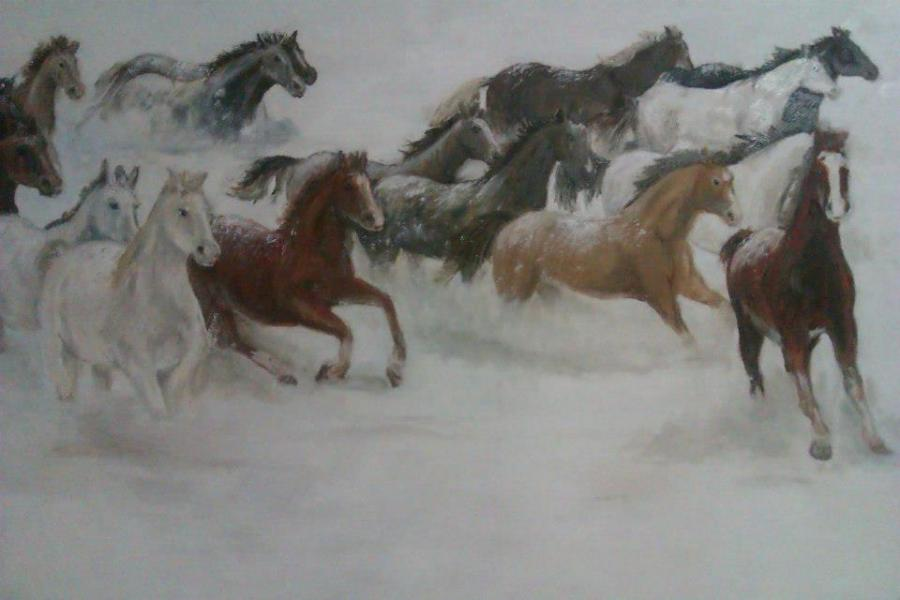 Picturi de iarna Cai in zapada