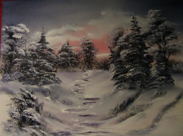 Picturi de iarna Poteca iernii