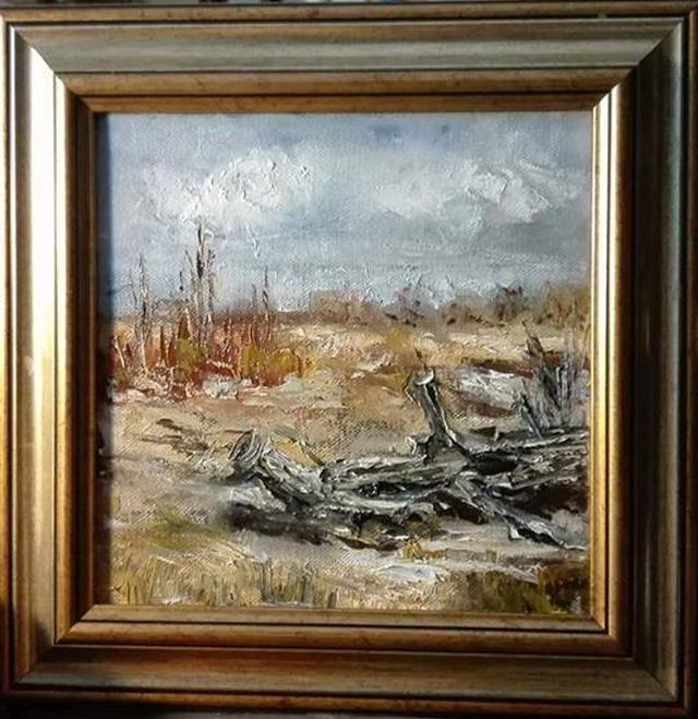 Picturi de iarna Prima umbra de zapada
