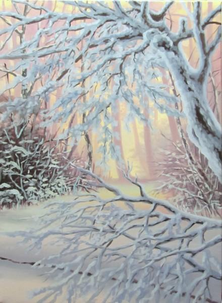Picturi de iarna O alta iarna inghetata