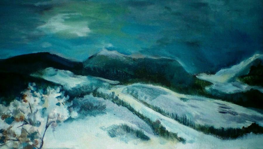 Picturi de iarna Iarna si culorile ei
