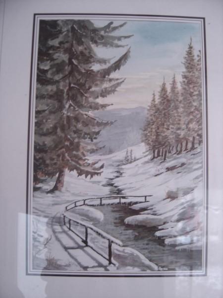 Picturi de iarna Iarna pe munte