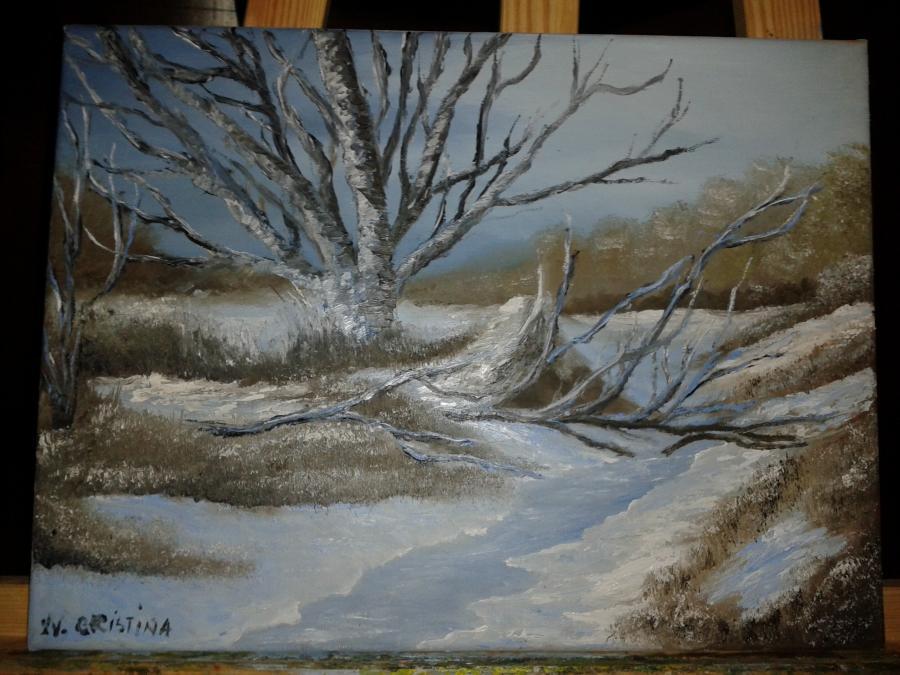 Picturi de iarna inceput de ianuarie