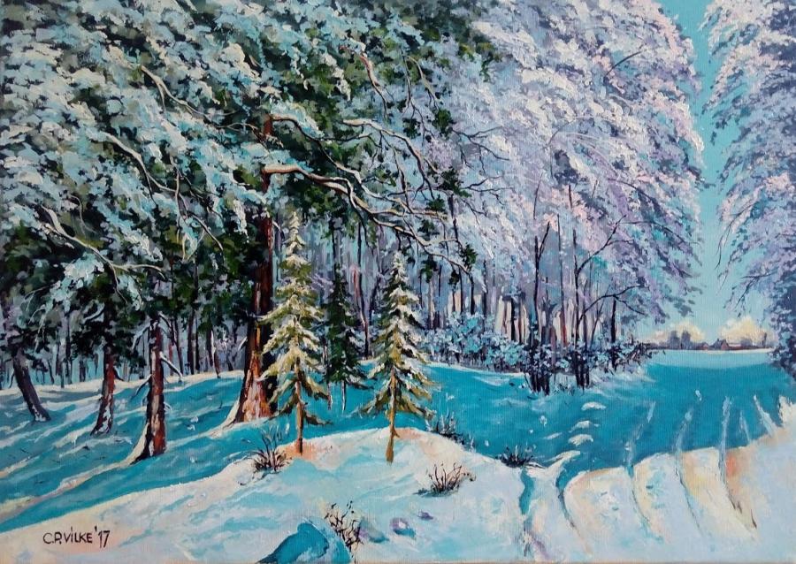Picturi de iarna Vraja iernii