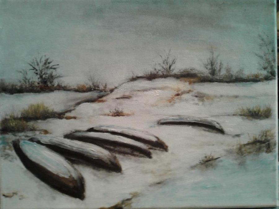 Picturi de iarna barci in Delta iarna