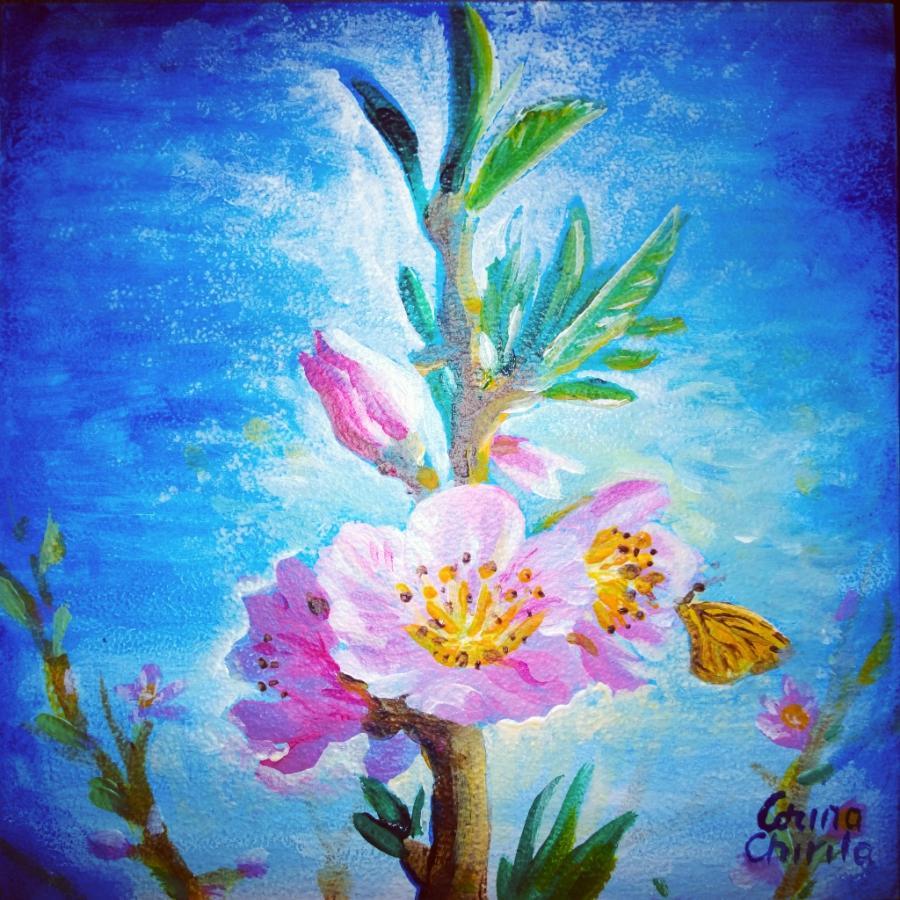 Picturi de primavara Prunus persica