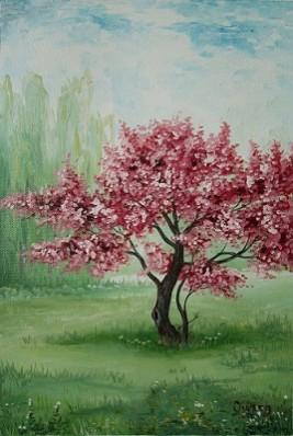 Picturi de primavara Un copac cu flori