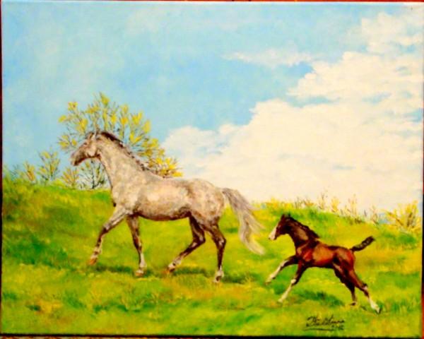 Picturi de primavara Primavara manzului