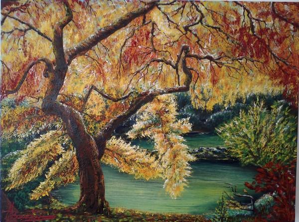 Picturi de toamna Baie de culori