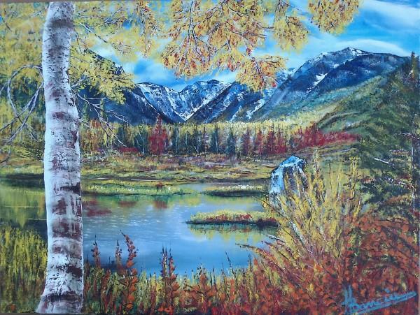 Picturi de toamna Oxidari de toamna