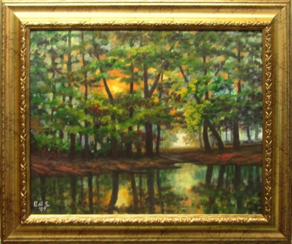 Picturi de vara Soare printre copaci