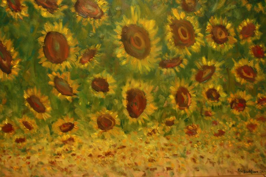 Picturi de vara Urmarind soarele