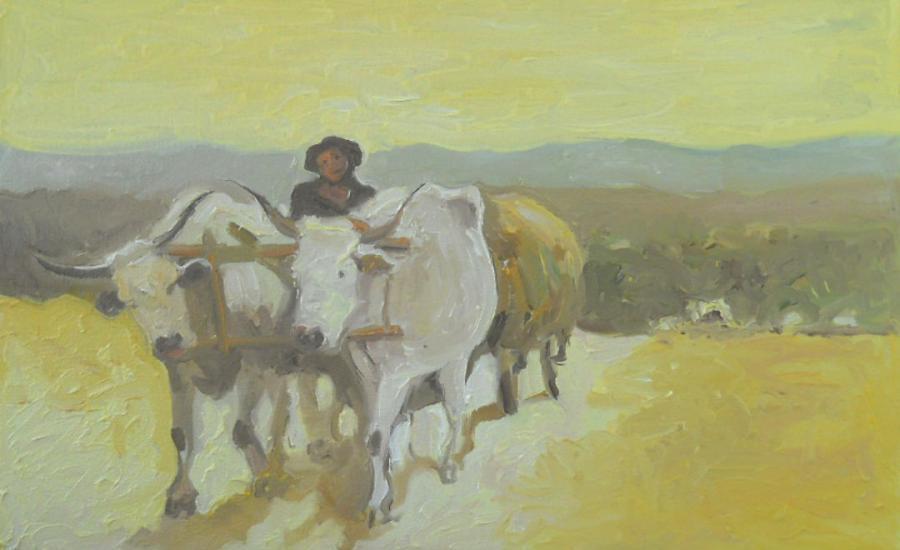 Picturi de vara car cu boi