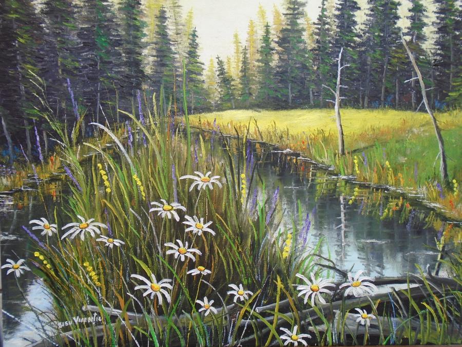 Picturi de vara dimineata castorilor 3