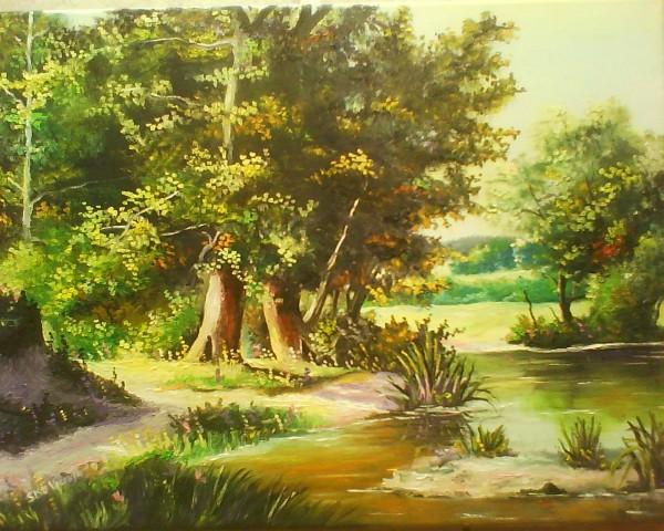 Picturi de vara Iazul din padure