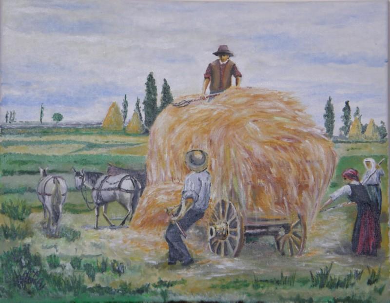 Picturi de vara munca la camp