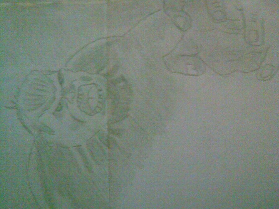 Picturi in creion / carbune d3