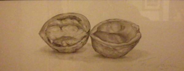 Picturi in creion / carbune Nuca