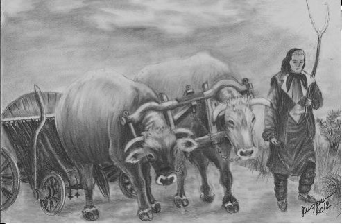 Picturi in creion / carbune Caruta cu boi