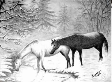 Picturi in creion / carbune La izvor