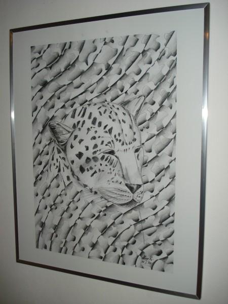 Picturi in creion / carbune Africa leopard