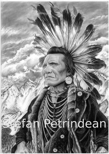 Picturi in creion / carbune Chief eagle by stefan petrindean